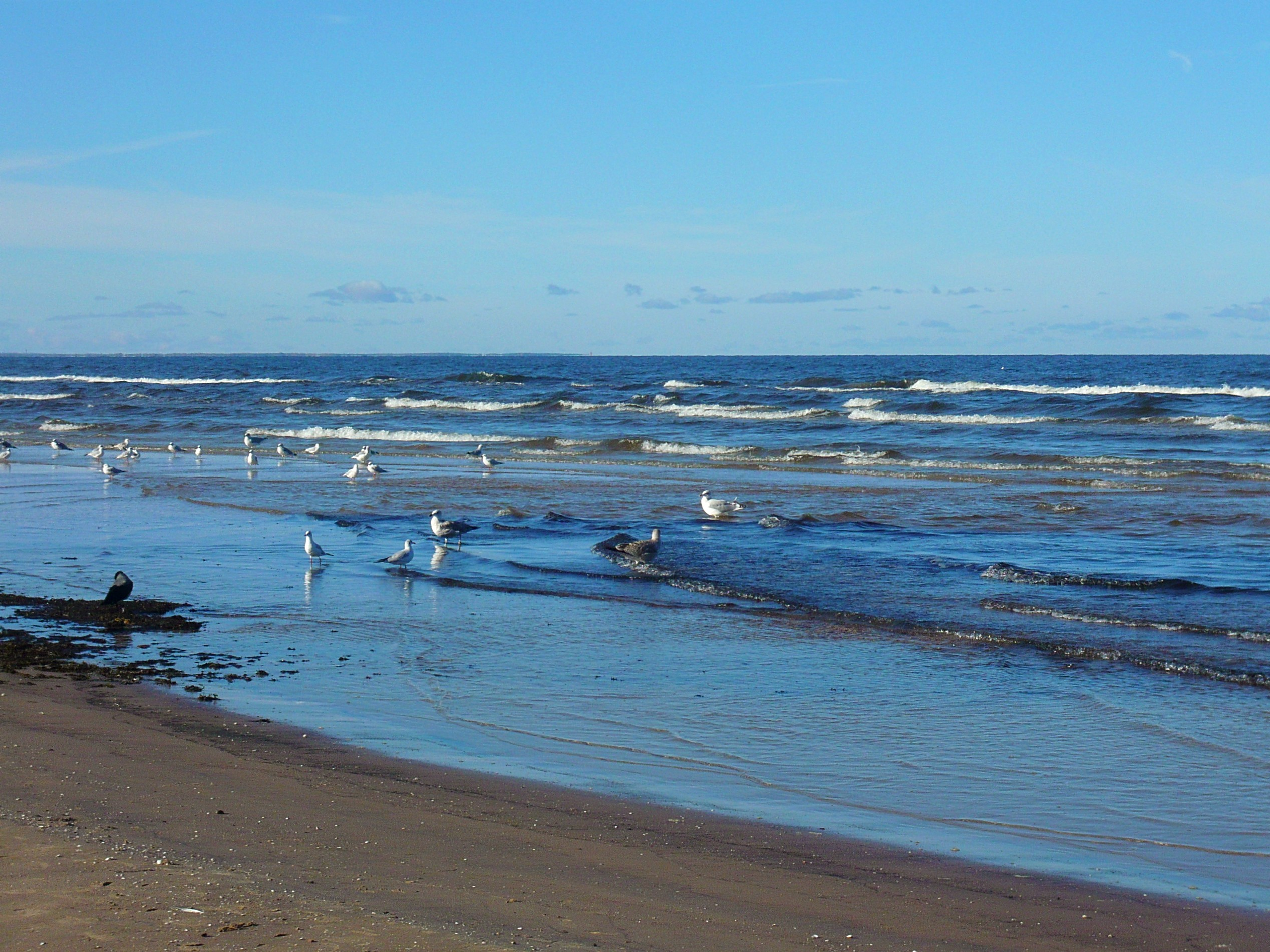 Strand van Jürmala