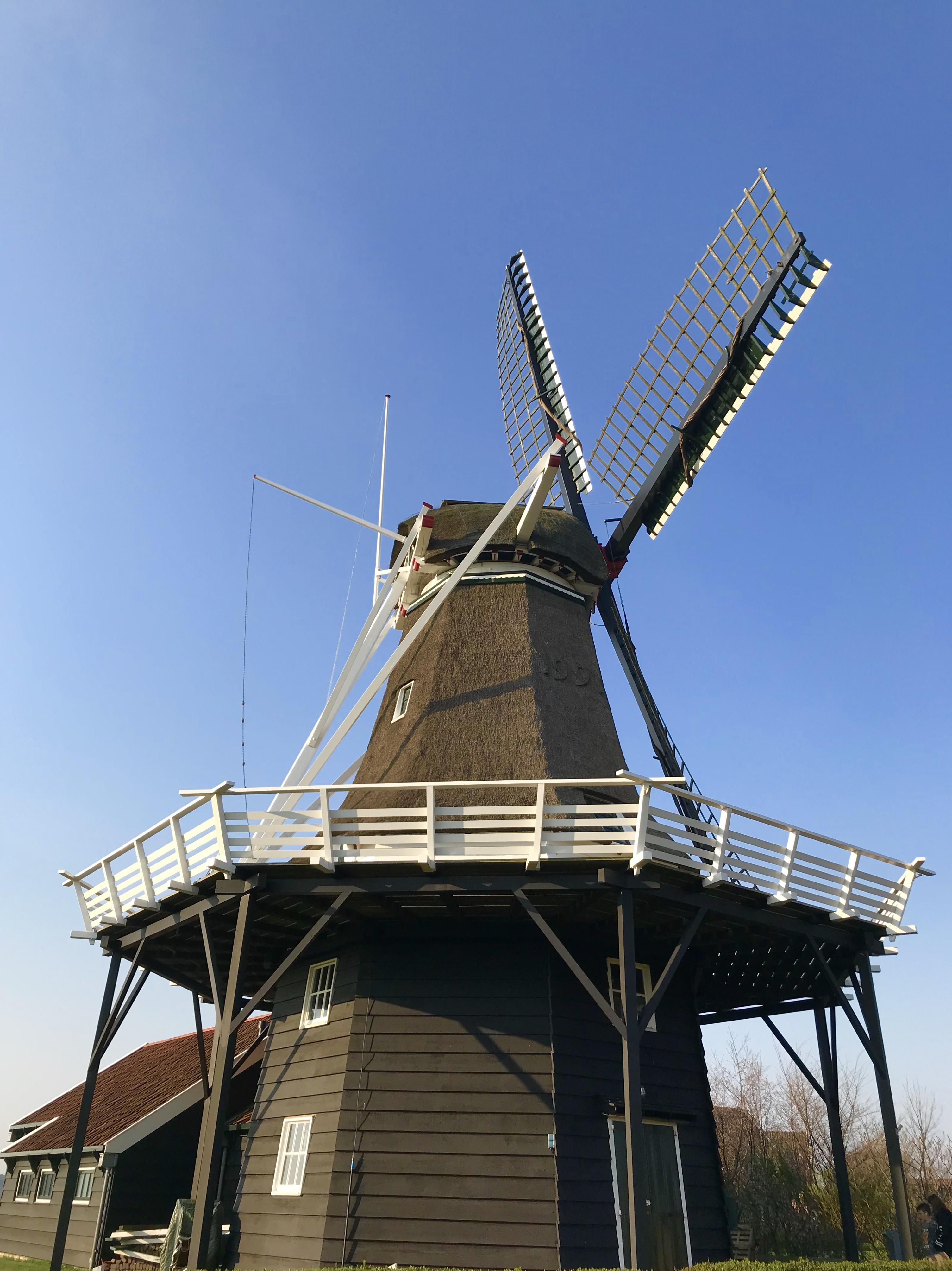 De molen 'De Verwachting' in Amland