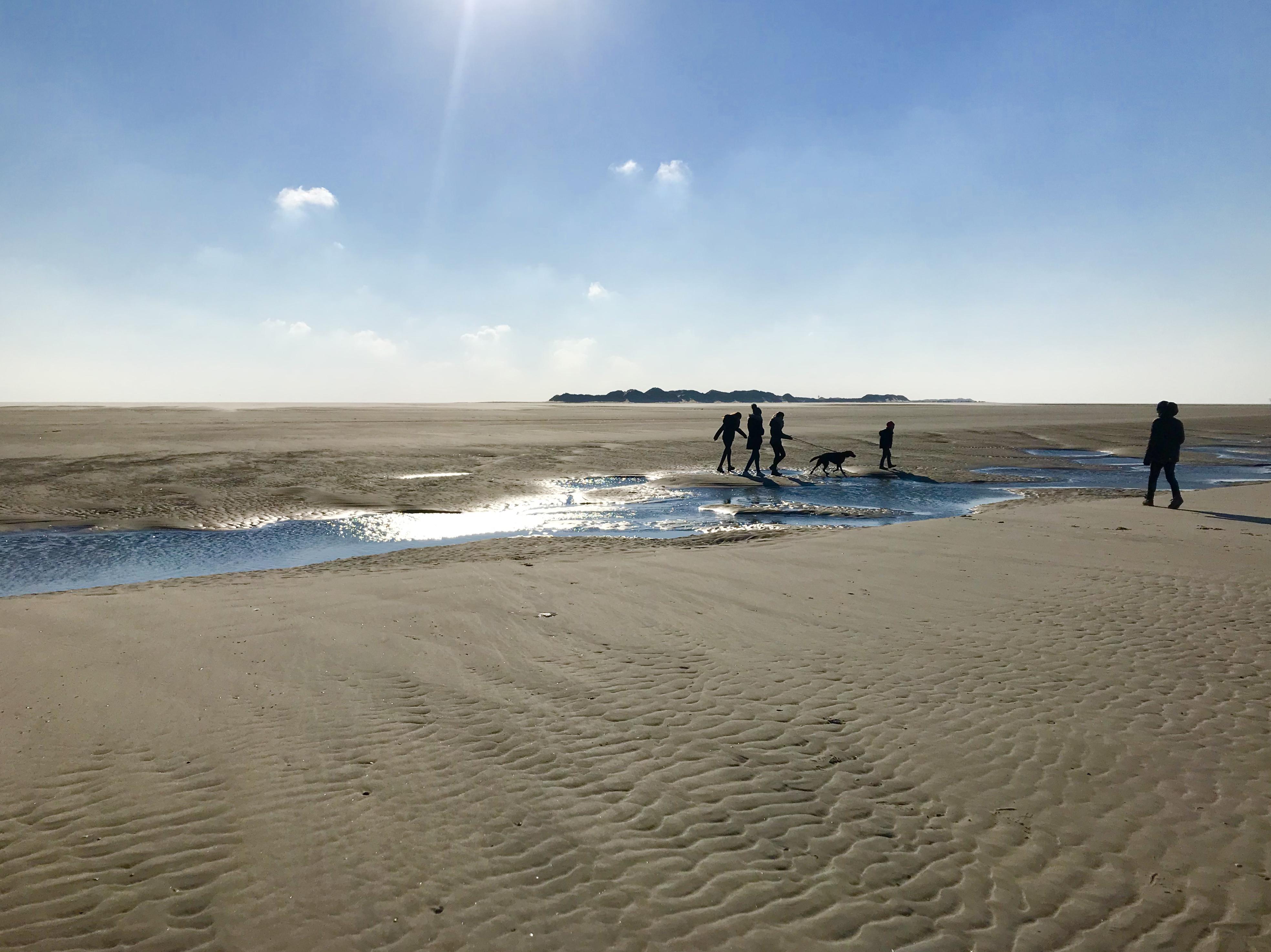 Stranden in het Oosten van Ameland