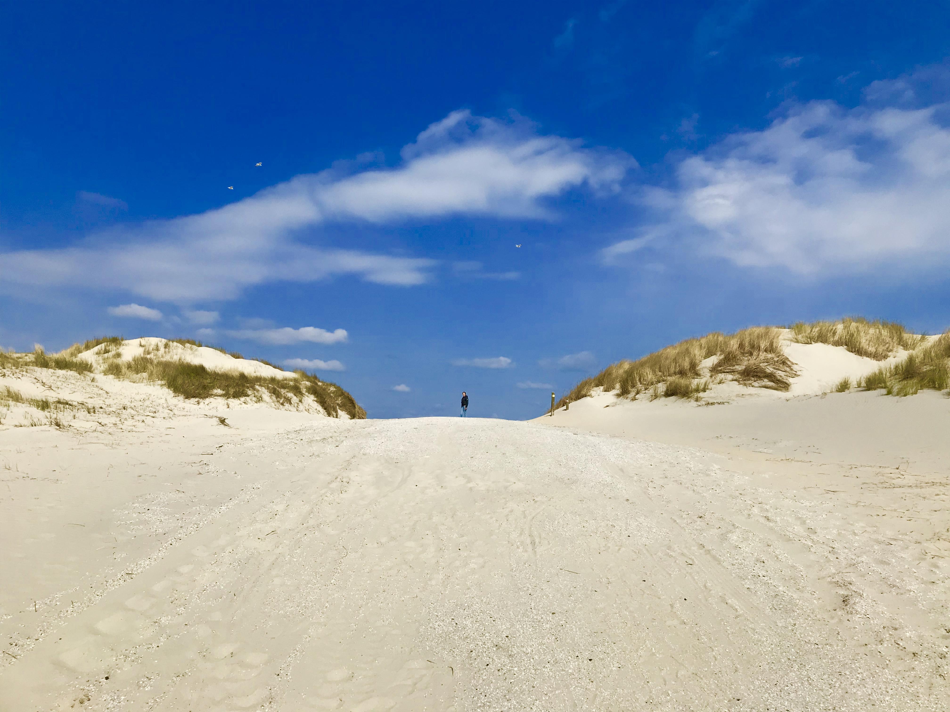 Duinen in Ameland