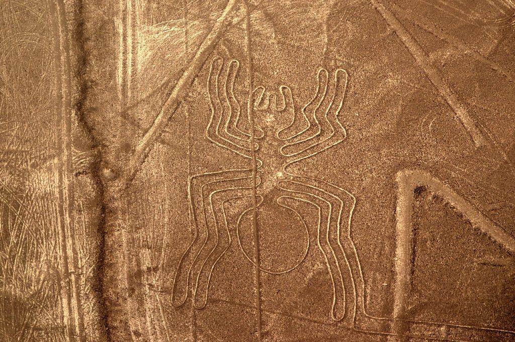 De spin. Nazca-lijnen in Peru.