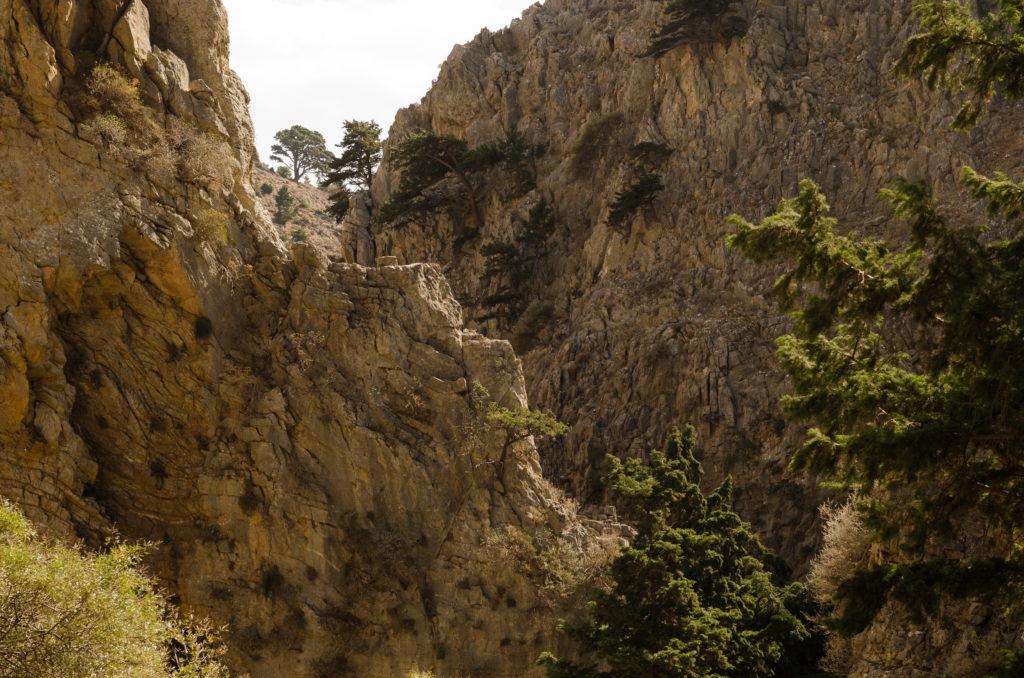 De Imbroskloof in Kreta